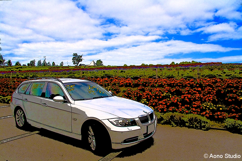 Painting of 335i Touring